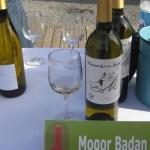Chasselas del Mogor - Mogor Badán