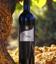 Bouteille Classic vigne