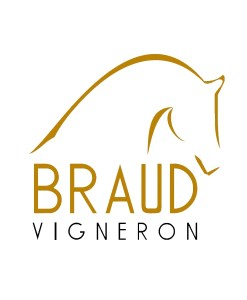 Julien Braud_logo