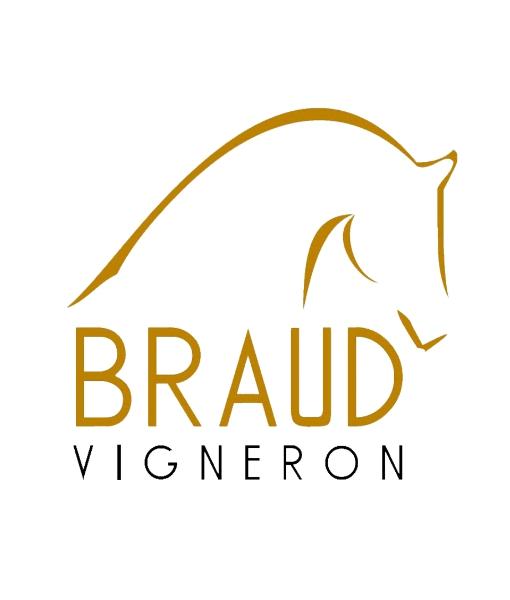 Julien Braud_logo