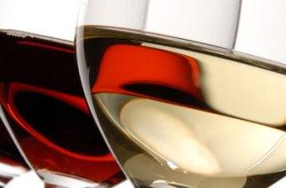 """""""Le donne del vino"""": Elena Martusciello presidente."""