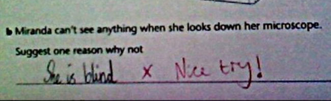 test-answers-that-are-totally-wrong-but-still-genius-27