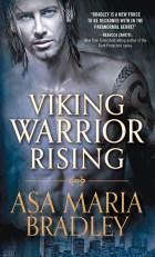 Viking Warrior Rising