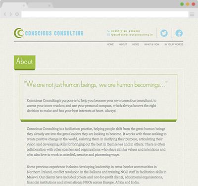 visible web design conscious consulting