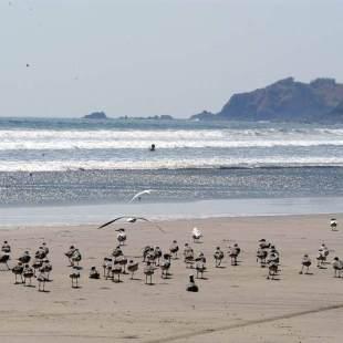 playa tamarindo el salvador (3)