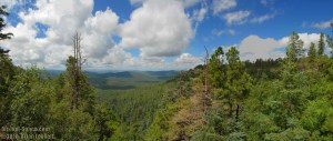 Mogollon Rim Visitor Center Overlook