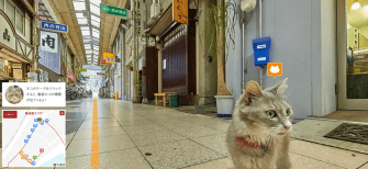 Japan Has 'Street View'… for Cats