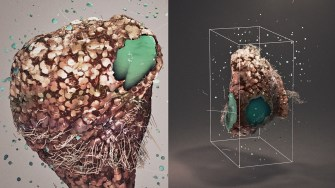 Incredible Motion Graphics Bring Microscopic Worlds to Life