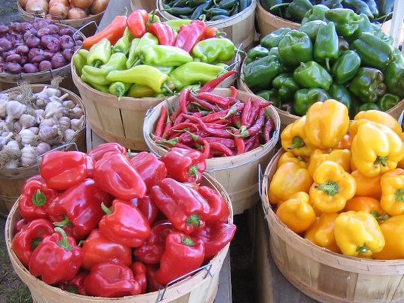 Deep Meadow Farm peppers