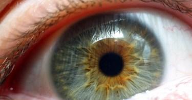 Iris_(Blue_eye_cose-up)