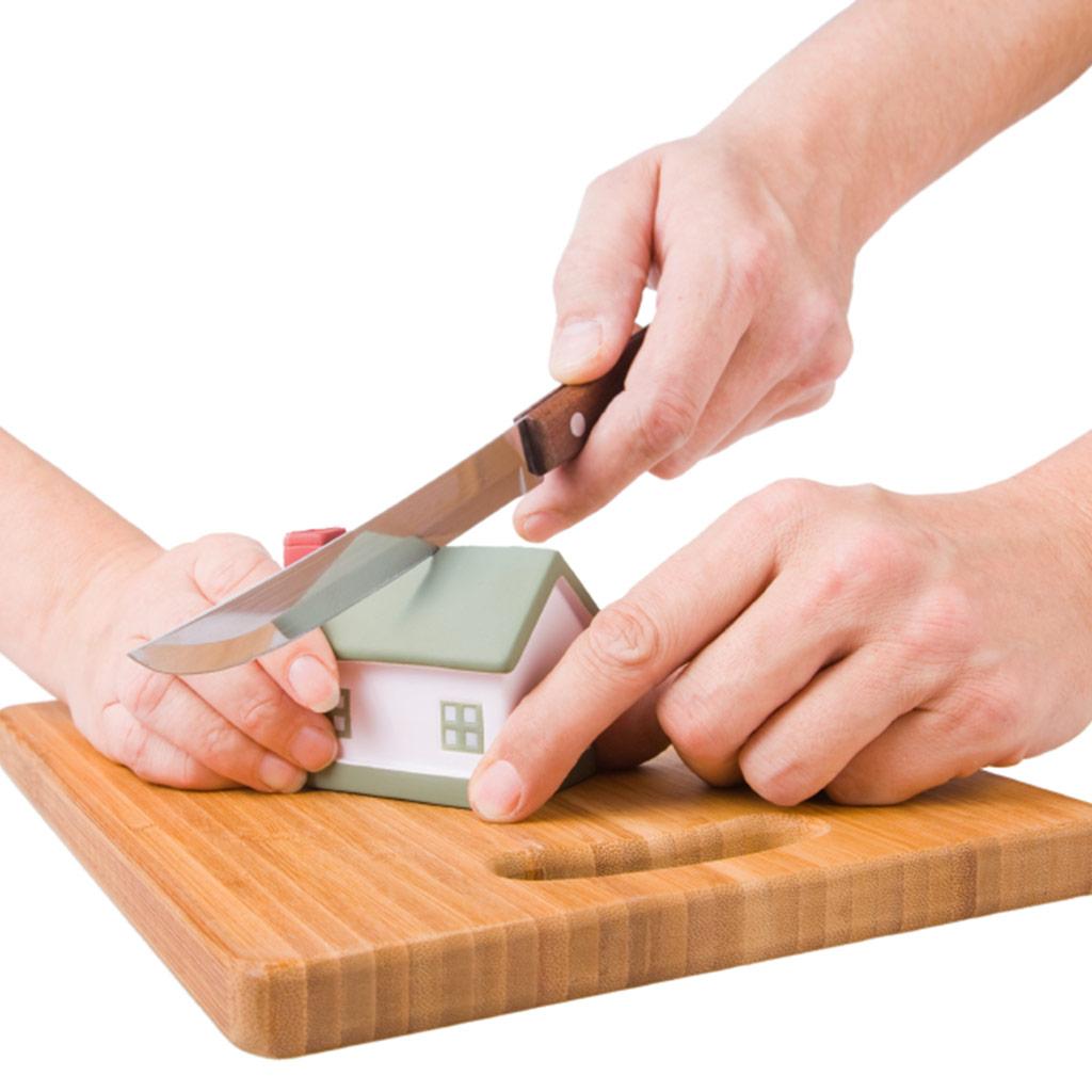 Cut-House-in-Half