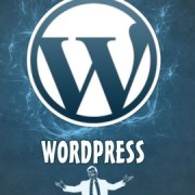 Curso Webmaster Wordpress nivel 1