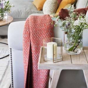 Decoración salon y sofá