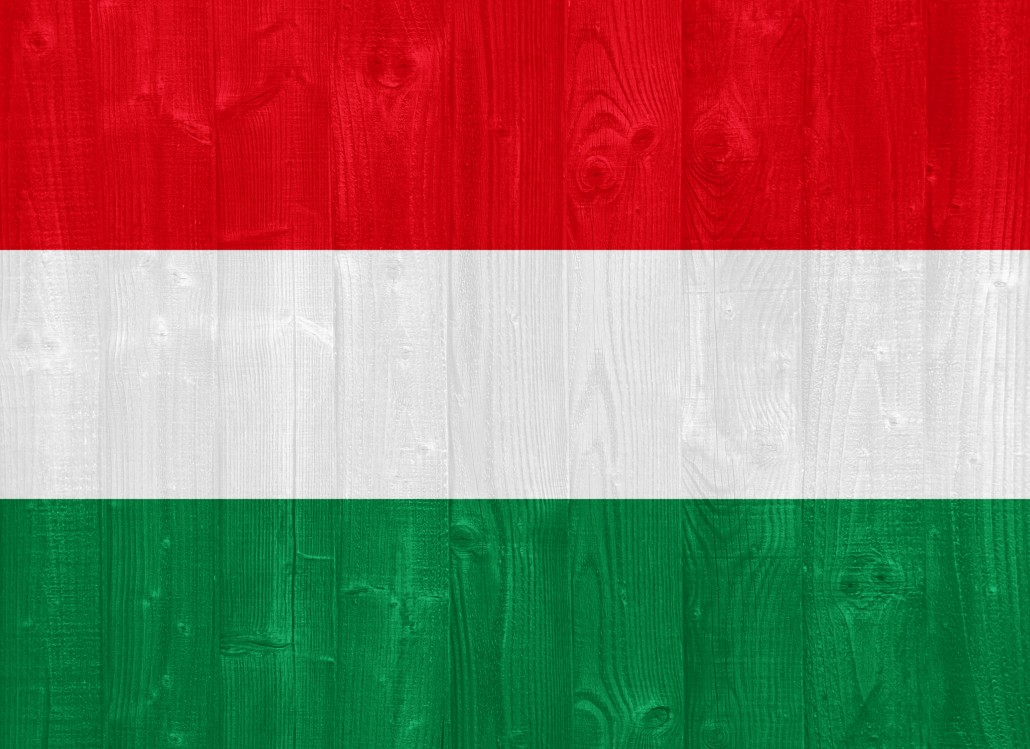 gorgeous Hungary flag painted on a wood plank texture