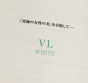 ヴィエルのパンフレットの画像
