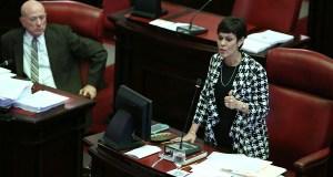 La senadora independentista María de Lourdes Santiago es la autora del P. del S. 340. (Suministrada / Capitolio)