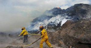 Integrantes del Cuerpo de Bomberos de Puerto Rico intentan controlar un fuego forestal.