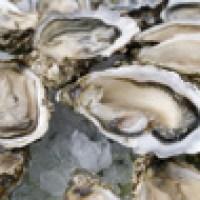 "Parigi: a ""pesca"" di ostriche e frutti di mare"