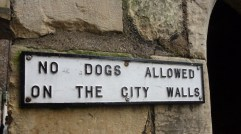 no dogs allowed on city walls