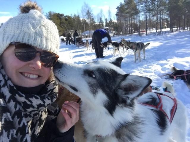 Zweeds Lapland Claire (12)