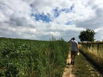 Vlaamse-Ardennen-Wandelwalhalla-44