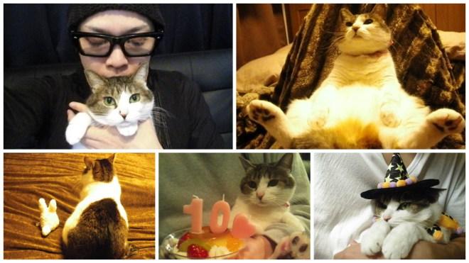 MUCC Tatsuro cat