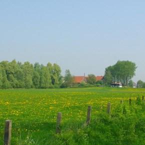 Landschapschilderen