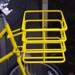 ebs_leaf_yellow