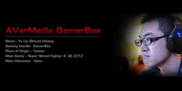 gamerbee