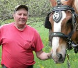 Draft horses bring fiber optics to remote locations