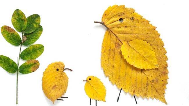 Прожилки листьев для поделок