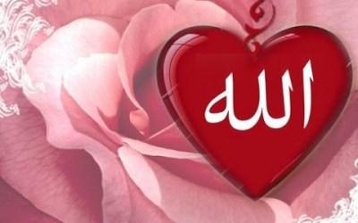 Ketika Allah Masih Menyayangi Kita