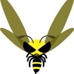 スズメバチに襲われやすい色は?刺されたら?ソレダメのスズメバチ対策の新常識!