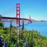 San Francisco's Top 5 Outdoor & Wildlife Experiences