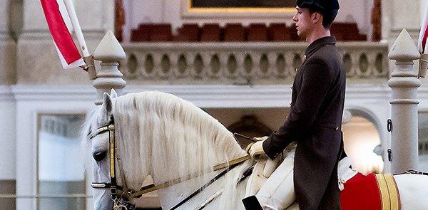 スペイン式乗馬学校とウィーン少年合唱団のコラボ