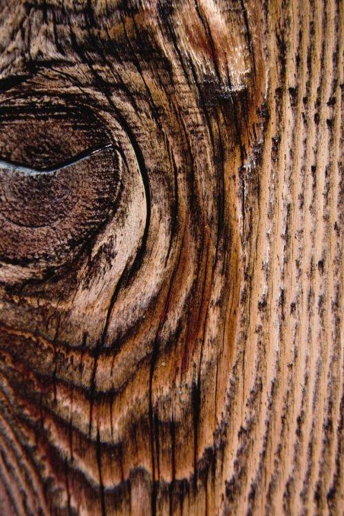 Medium Of Wood Grain Wallpaper