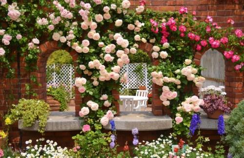 Medium Of Free Garden Images