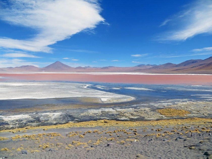 Laguna colorada The red lagoon of Bolivia