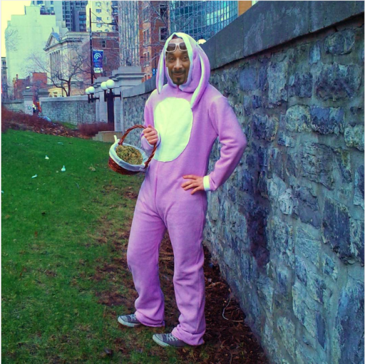 snoop-rabbit
