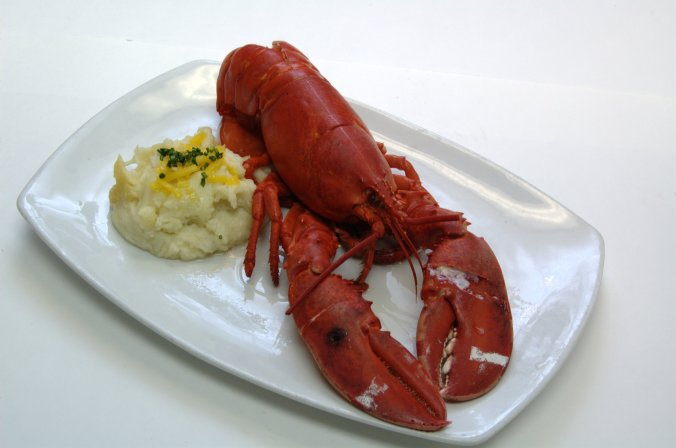SteamedLobster
