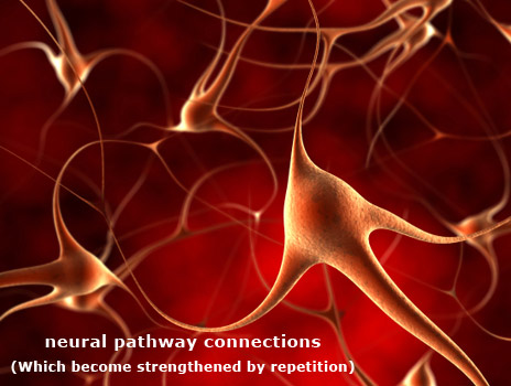 neural-pathway-connections