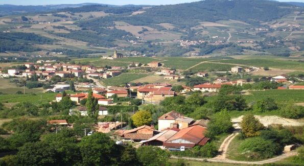 France's Beaujolais region produces fruity Gamay-based wines.