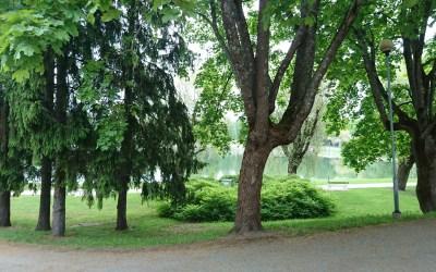 Suomen ensimmäinen hävikkiruokaravintola avataan kesäkuussa Lapinlahteen