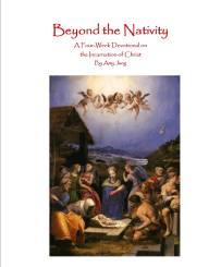 cover for beyond the nat