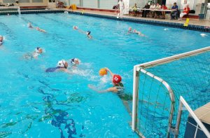 waterpolo_2-2910765