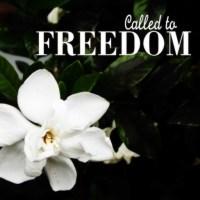 Delighting in Freedom