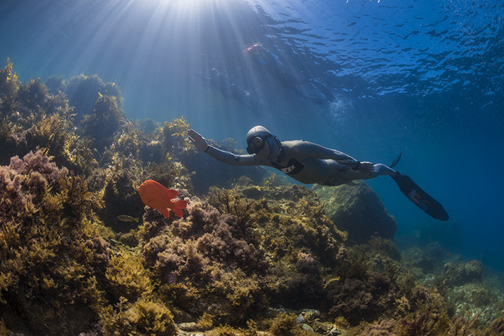 Advanced freediving courses in Melbourne with WaterMaarq Freediving