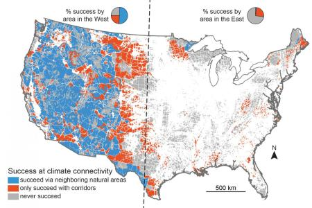stunningly study touts the need for plants and