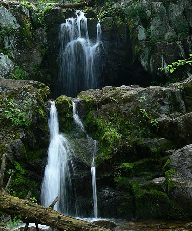 The 3 Easiest Waterfall Hikes in Shenandoah National Park (Part 2)