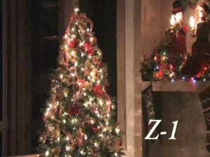 HolidayPromoZ-1.Still004